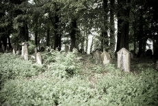 The New Jewish Cemetery in Cieszyn