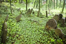 The Old Jewish Cemetery in Cieszyn